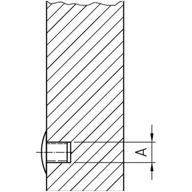 Kamštukas 5x8 3