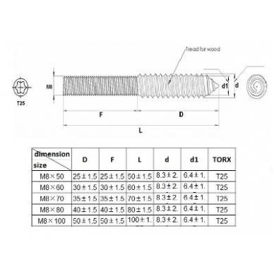Kombinuota smeigė M8x100mm, cinkas 2
