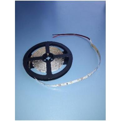 LED juosta 12V 5000x12x4 mm, 300 diodų, 14,4W, šalta balta, atspari vandeniui
